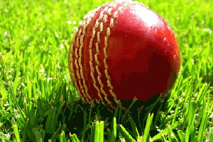 Profitable cricket predictions